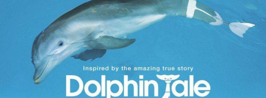 Free Movies Pier 60: Dolphin Tale/PG