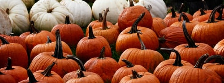 Harvest Festival Creatures & Critters Weekend