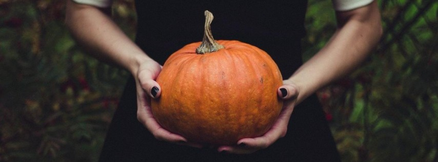 Beer & Chocolate Pairing: Virtual Event Halloween Edition | Brew Bus Brewing