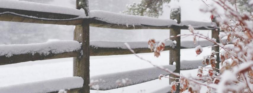 The Winter Village at Curtis Hixon Park 2020