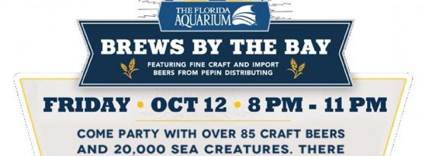 Craft Beer Festival Florida Aquarium