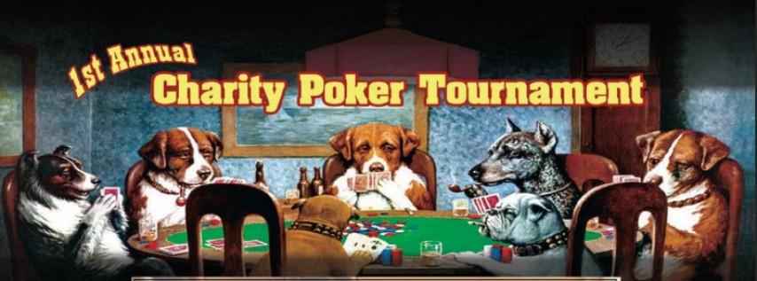 Casino pet rescue