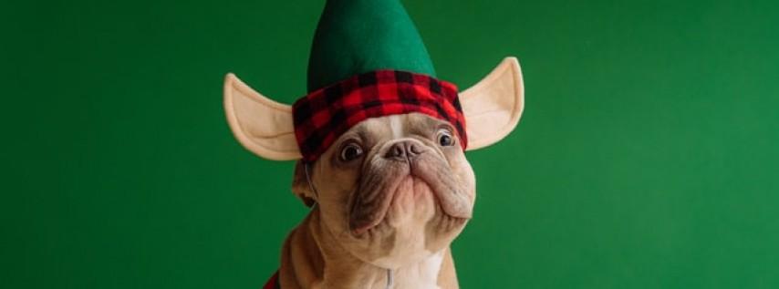Christmas Luau at Two Shepherds Taproom!