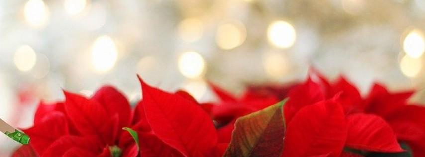 Christmas Day Celebration at Hotel Contessa