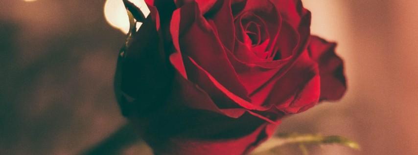 Valentine's Day Weekend | Rosen Plaza