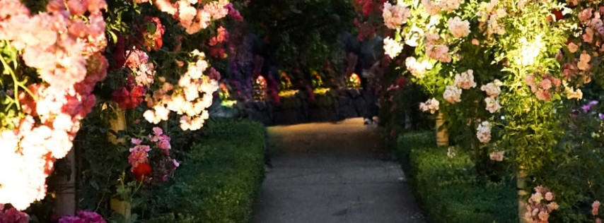 Annual Edison Ford Garden Festival