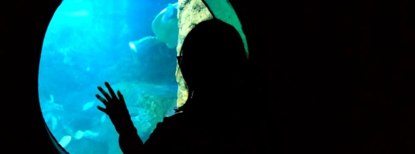 Easton Corbin at SeaWorld Orlando