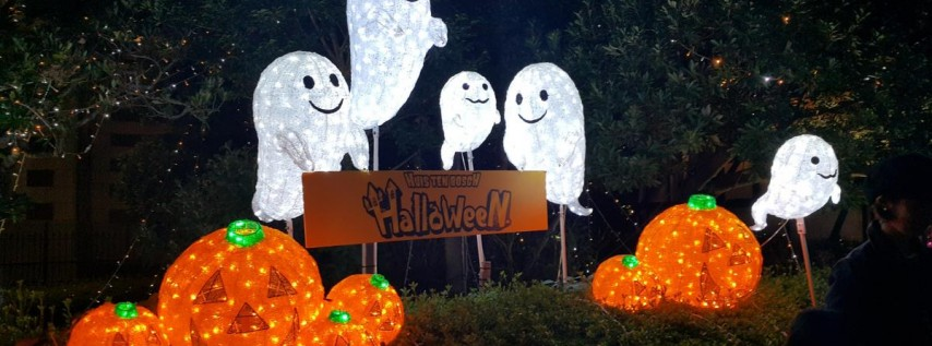 Halloween Light Show - 2021 Fundraiser - Sylvan Ramble Lights