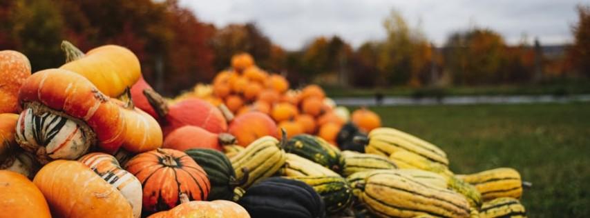 2021 Annual Pumpkin Festival