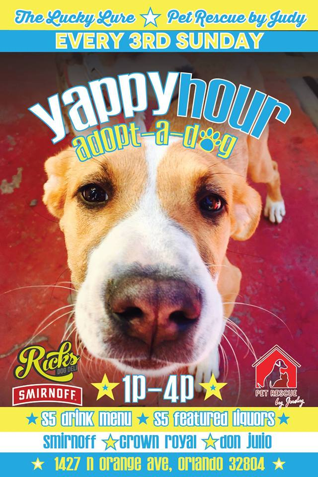 Yappy Hour w/ Pet Rescue by Judy