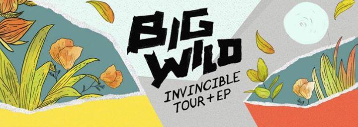 Big Wild at Crowbar