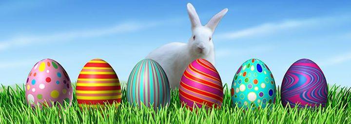 Toddler Time: Lil' Bunnies Egg Hunt!
