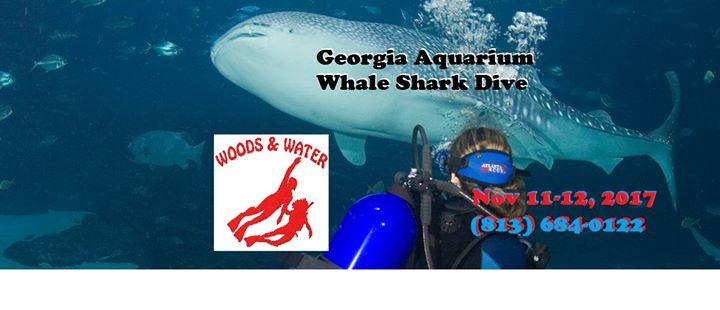 Whale Shark Dive: GA Aquarium