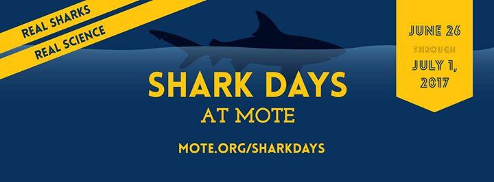 Shark Days at Mote: Real Sharks, Real Science