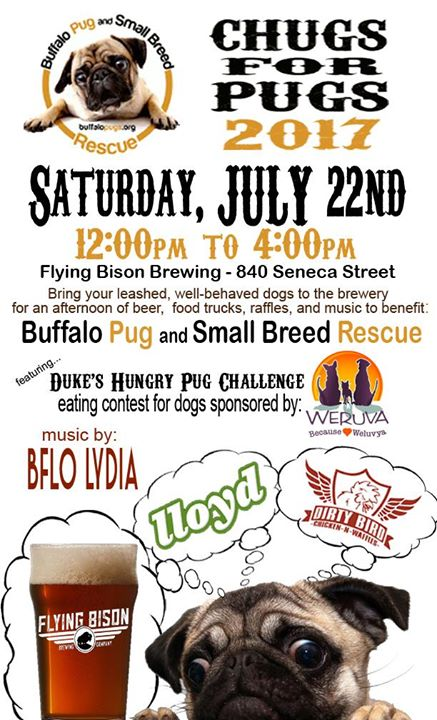 6th Annual 'Chugs For Pugs' for Buffalo Pug & Small Breed Rescue