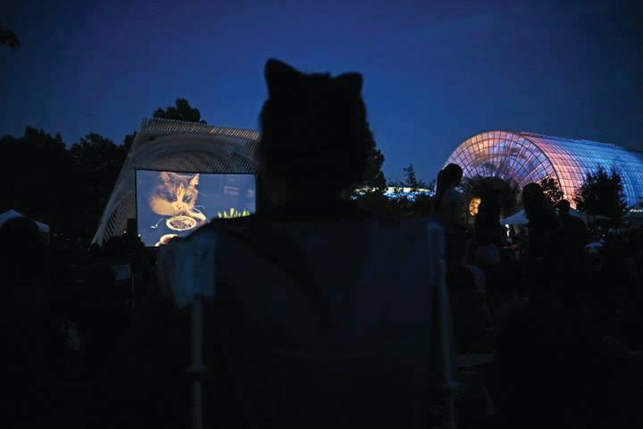 Cat Video Fest 2017 in the Gardens