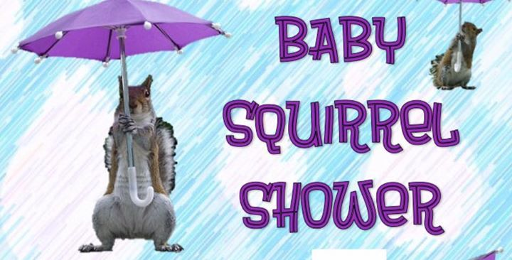 8th Annual BABY SQUIRREL SHOWER