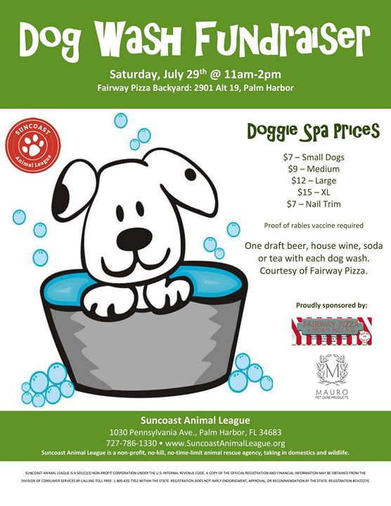 Dog Wash Fundraiser: July 2017