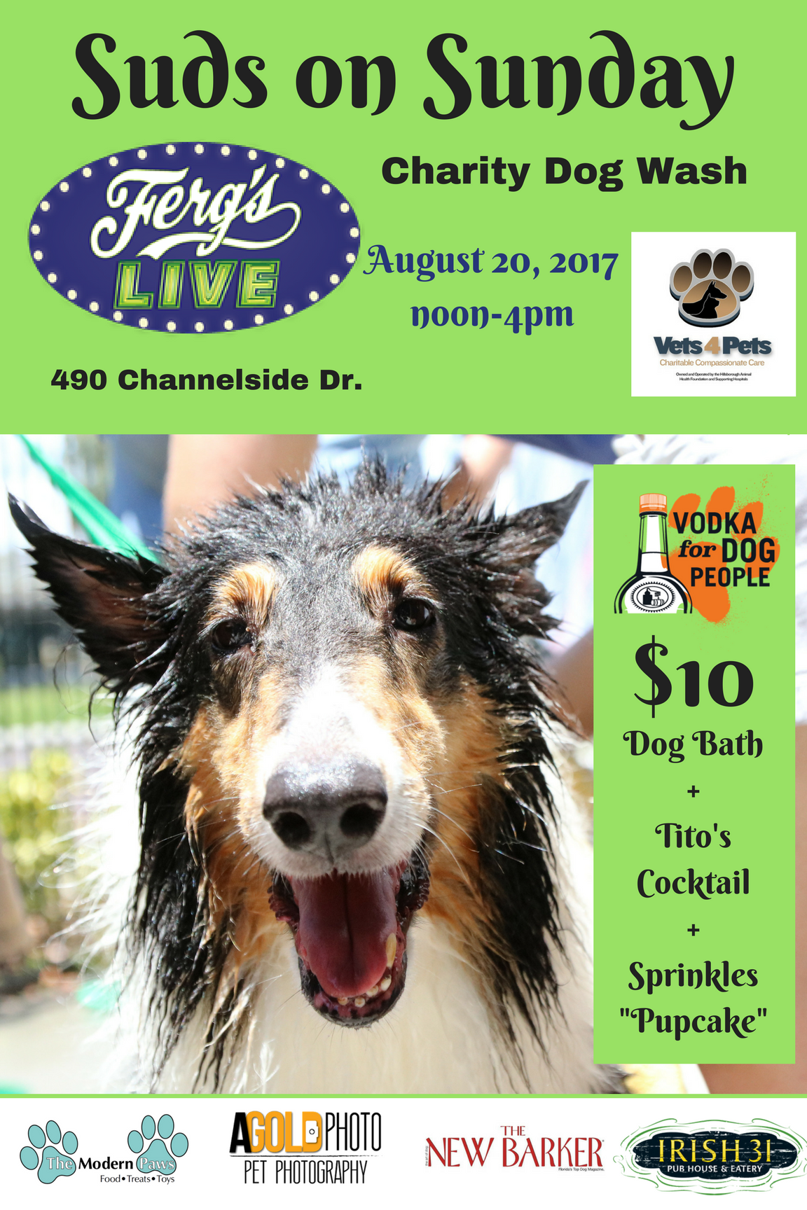 Suds on Sunday Charity Dog Wash