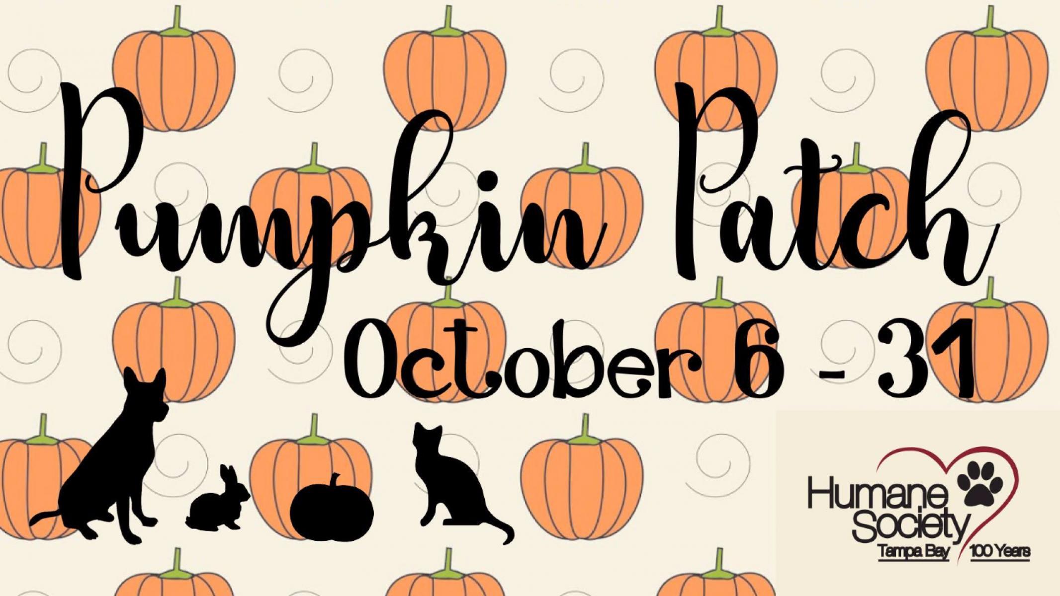 15th Annual Humane Society Pumpkin Patch