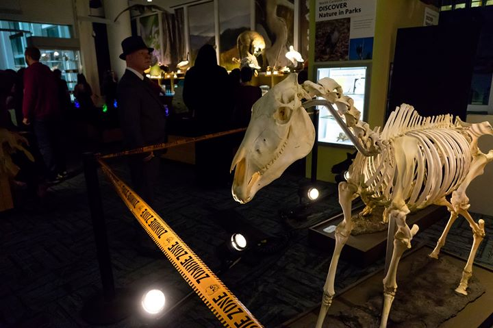 Raleigh Museum Of Natural Sciences New Years Eve
