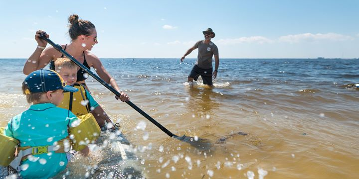 Learn to SUP at Picnic Island