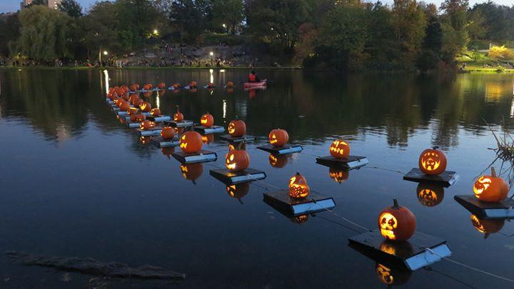 Halloween Pumpkin Flotilla