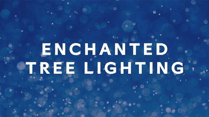 Enchanted Tree Lighting