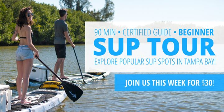 Sunday Morning Eco Tour of Tampa Bay's Most Popular SUP Spot: Gandy Beach