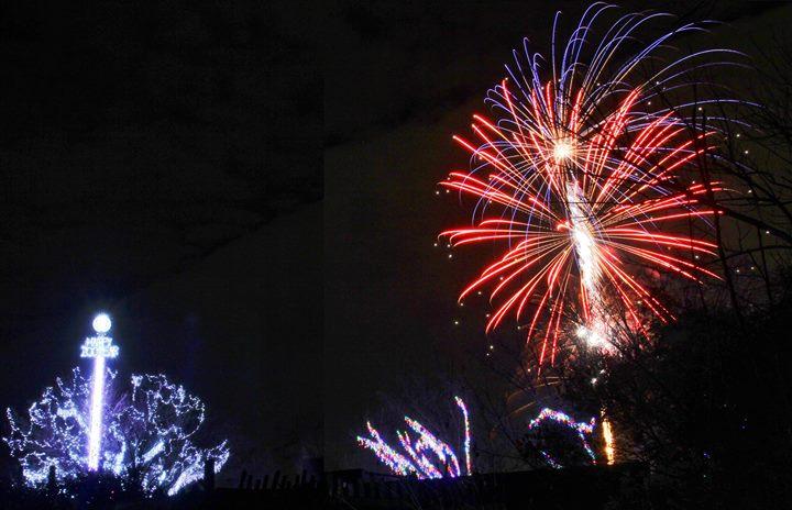 Happy Zoo Year Powered By Cincinnati Nky Honda Dealers