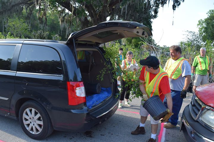 City of DeLand and DeLand Breakfast Rotary Tree Giveaway