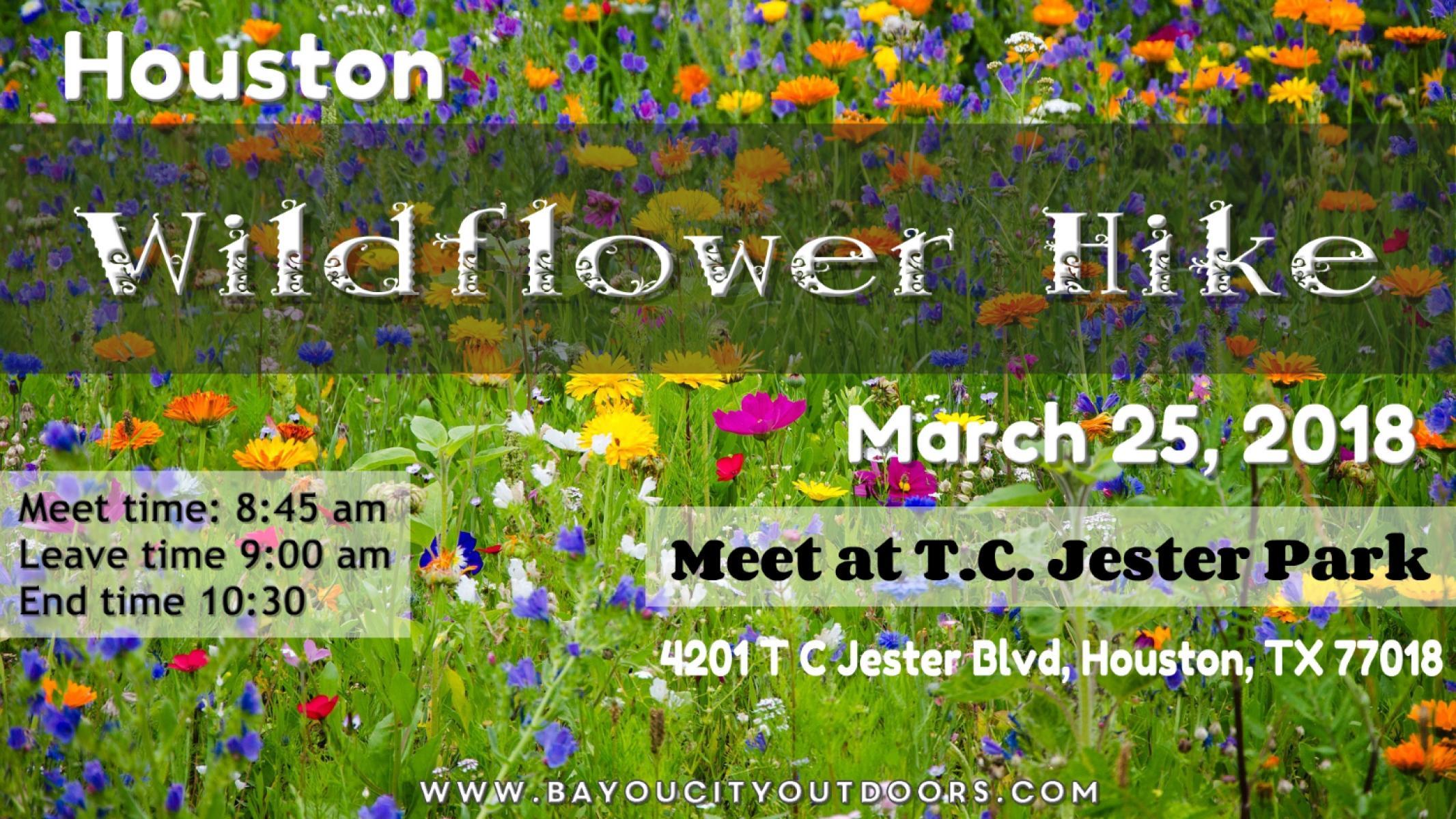 Houston Wildflower Hike