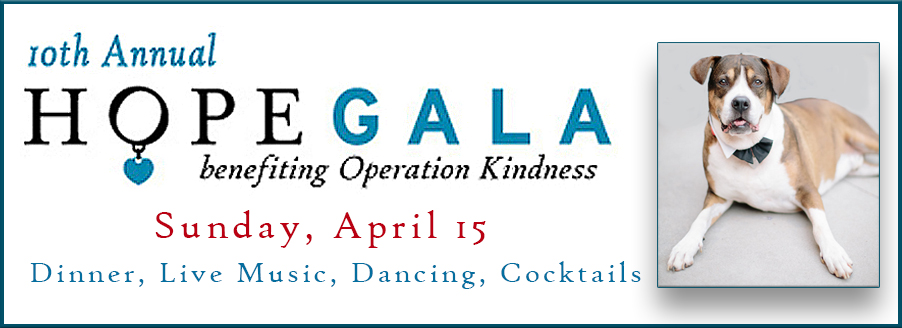 Operation Kindness 10th Annual Hope Gala