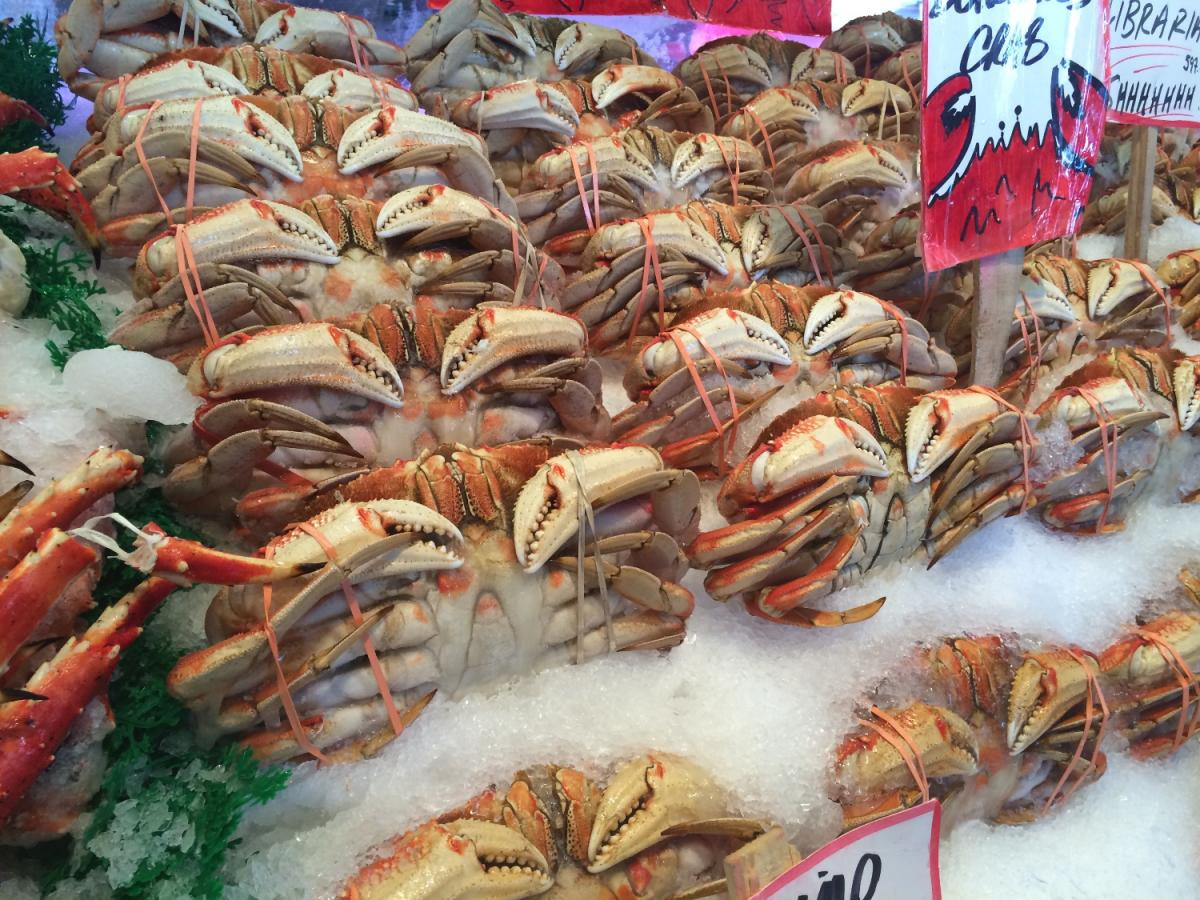 9th Annual Stone Crab Festival Fort Myers Fl Oct 26