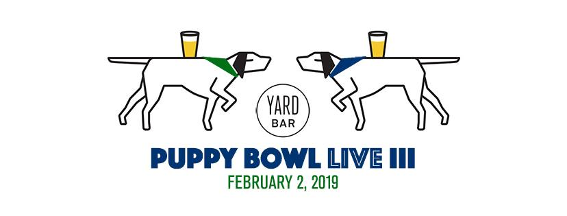 Puppy Bowl Live Iii Austin Tx Feb 2 2019 1 30 Pm