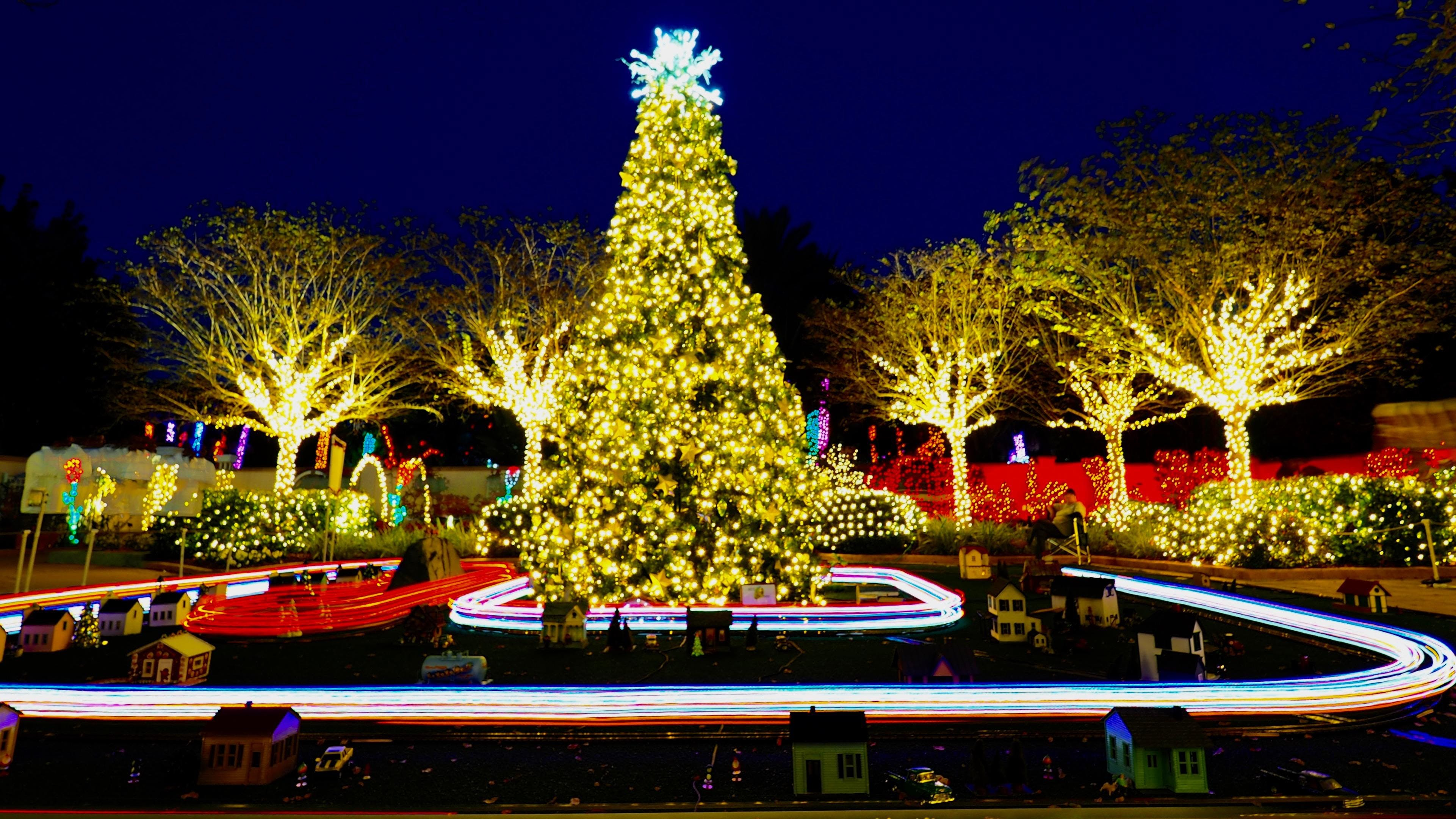 433701 1570561028 - Florida Botanical Garden Florida Botanical Gardens December 5