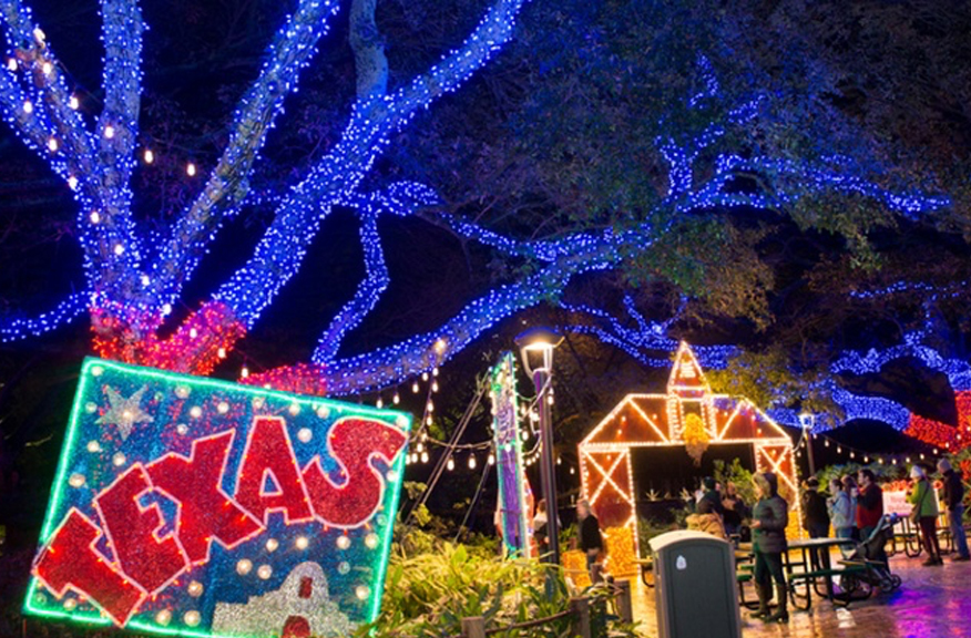 Image result for houston zoo lights 2019