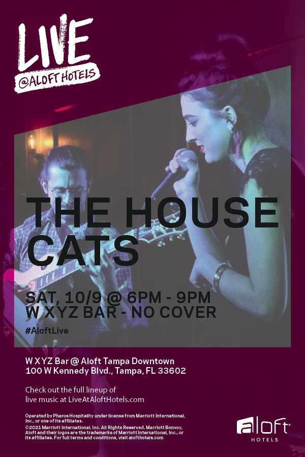 House Cats at Aloft Downtown Tampa