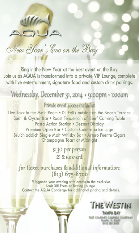 New Year's Eve on the Bay, Tampa FL - Dec 31, 2014 - 9:00 PM