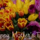 Celebrate Mother's Day with an Extravagant Brunch and Dinner Specials at Prairie Grass Cafe in Northbrook