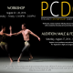 Peridance Contemporary Dance Company Audition