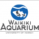 Waikiki Aquarium World Oceans Month's LEAHI Display and LEGO Build