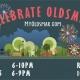 Celebrate Oldsmar 2015