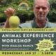 Keiki Club ft. An Animal Experience with Kualoa Ranch