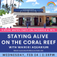 Keiki Club ft. 'Staying Alive On The Coral Reef' with Waikiki Aquarium