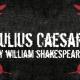 Shakespeare in the Park / Julius Caesar