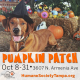 Humane Society of Tampa Bay Pumpkin Patch