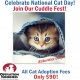 "Operation Kindness Celebrates National Cat Day with a ""Cuddle Fest"""