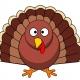 Acro Jam for Turkey Day!!!! Free/Donation