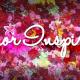 Amor Inspirado, A Celebration of Love